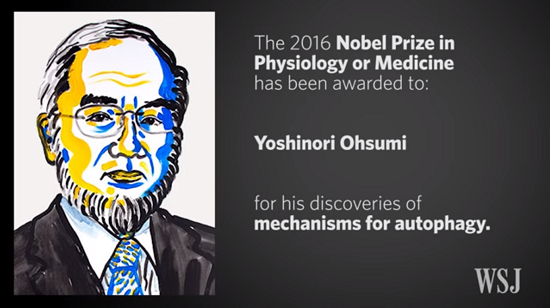 Nobel Prize in Physics or Medicine
